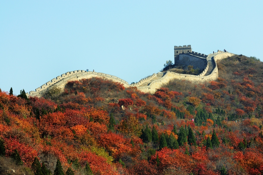 The Great Wall of China surrounded by autumn foliage October travel