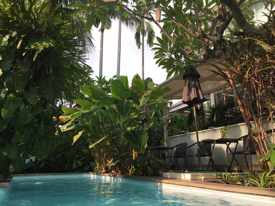 Hotel pool and tropical foliage