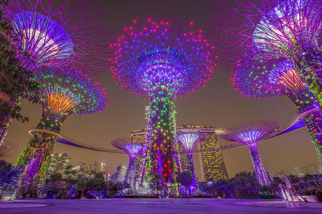 Top 10 best free things to do in Singapore at night!  Skyscanner Singapore