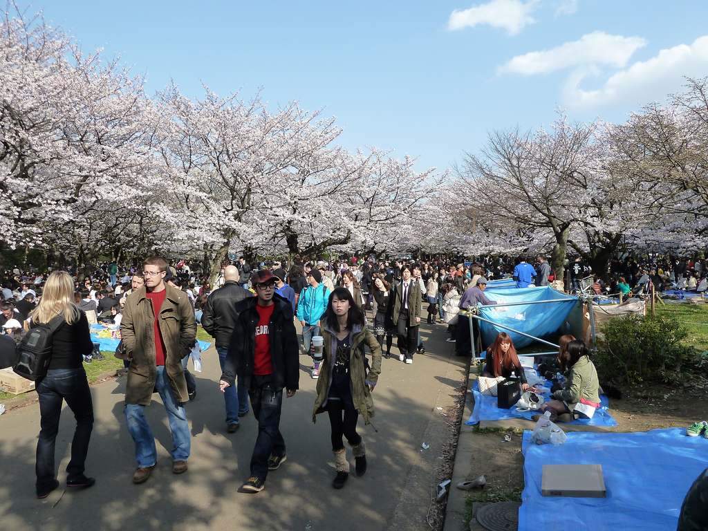 Crowds exploring flea market in park with trees with cherry blossoms blooming